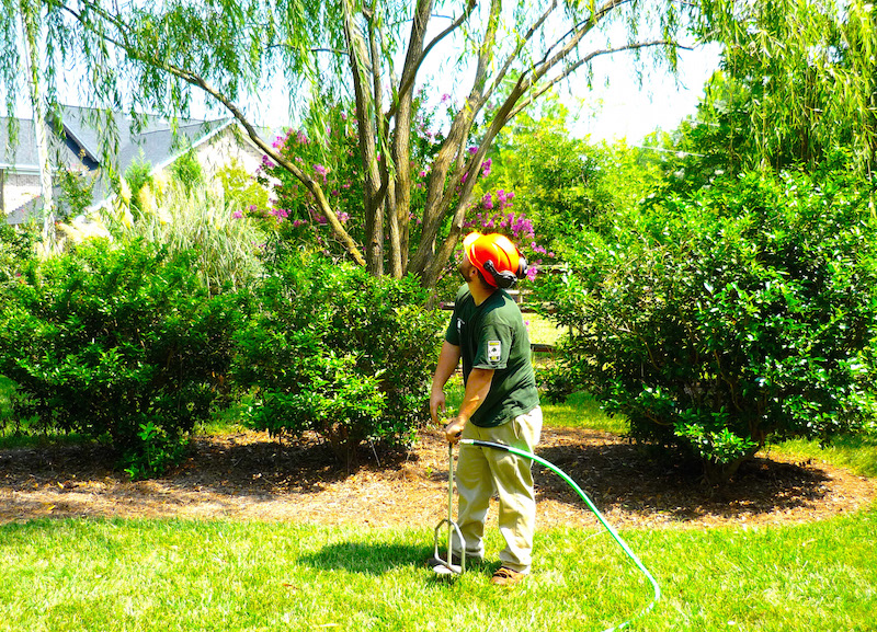 Tree Fertilization Wichita KS Wichita Tree 2250 N. Rock Rd Ste 118-268C Wichita, KS 67226 https://plus.google.com/b/112793476550800713698